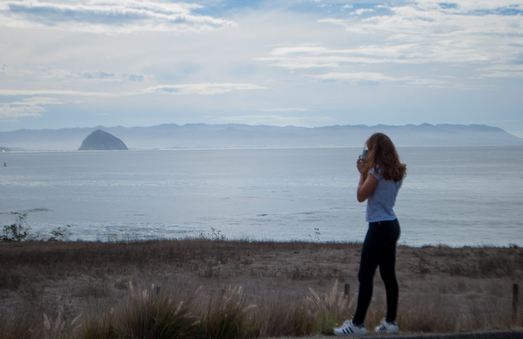 Road Tripping the Pacific Coast Highway - Never Without Navy