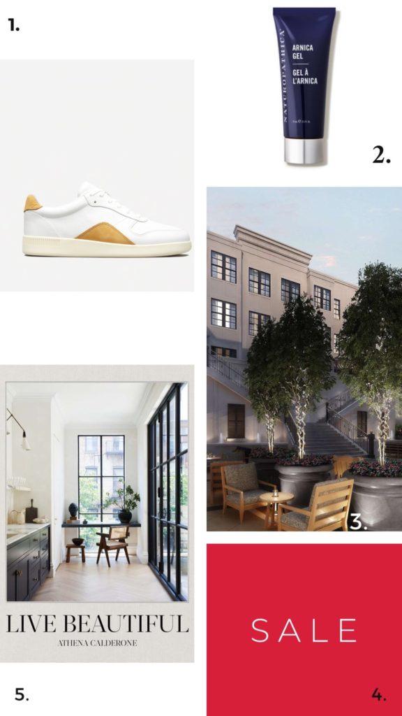 Everlane's Court Sneaker